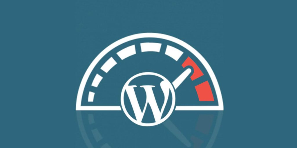 Premium WordPress customer
